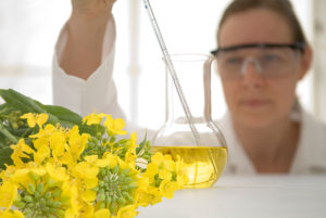 how to become a biofuel manager